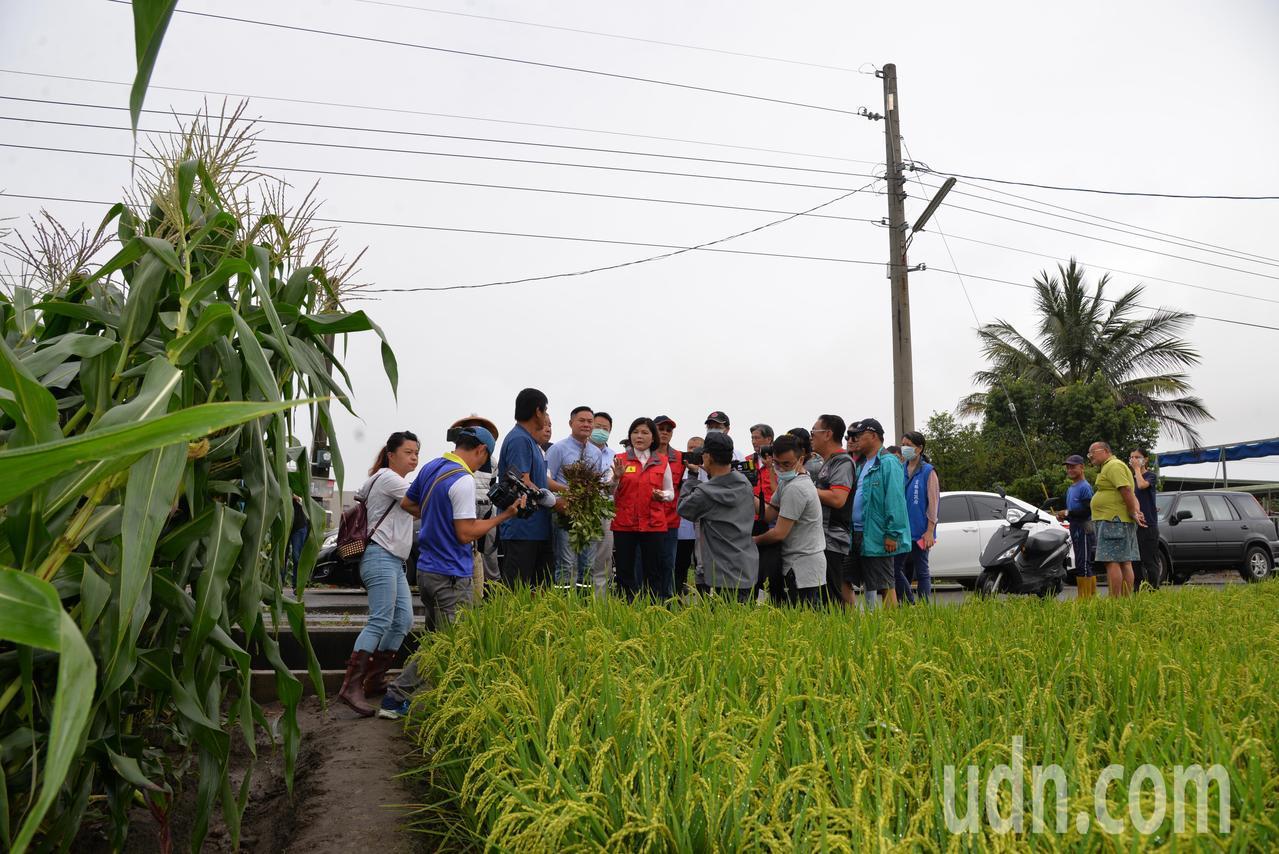兩天風雨雲林傳出農作災情 張麗善籲從優從速救助