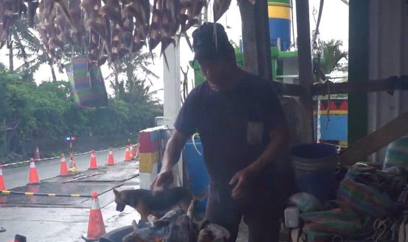 台東蘭嶼正值飛魚季,但梅雨鋒面帶來連日大雨,不見陽光照射,使得島上族人傳統曬飛魚受阻,族人改以柴燒煙燻取代。記者尤聰光/翻攝