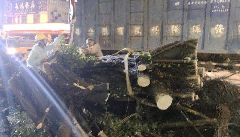 台灣今年首波梅雨鋒面,造成台中市一些路樹倒塌,建設局昨天徹夜完成枝幹清理,恢復道路通行。 圖/台中市建設局提供
