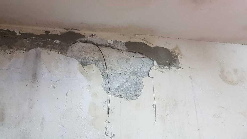 日前一名女網友PO文提到,她家三合院的牆壁上突然「竄出一條樹根」,甚至長到垂掛在...