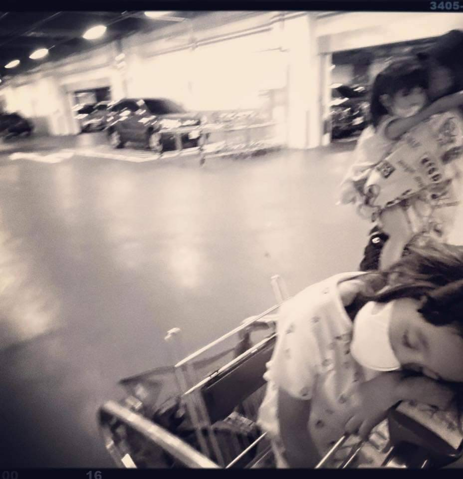 咘咘(前)直接在購物車上睡著。 圖/摘自臉書