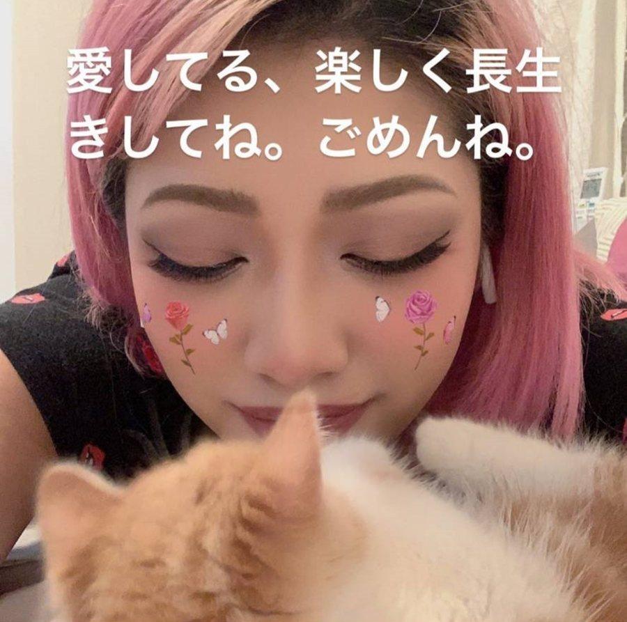 木村花在最後的IG發文裡,留下了自己與愛貓的合影,「我愛你,要快樂地長命活下去喔...