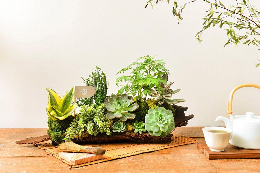 圖/有肉Succulent & Gift 提供