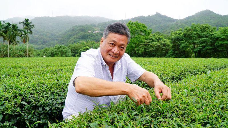 新北好茶春季包種茶評鑑結果,由坪林區茶農李傳清奪下新北茶王頭銜。圖/新北市農業局提供