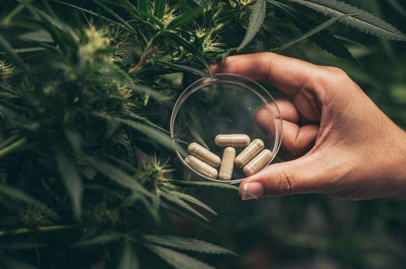 舊金山公共衛生部就直接向旅館提供酒精、菸草、大麻與美沙酮等醫療用毒品,希望讓這些流浪漢在旅館裡面自己嗨,就不會再偷出門了。示意圖/ingimage