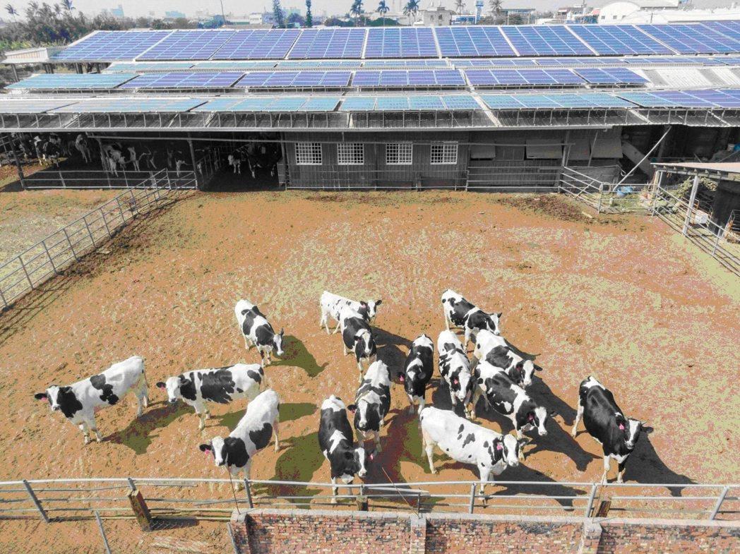 畜電共生案例(420kw) 能源局/提供