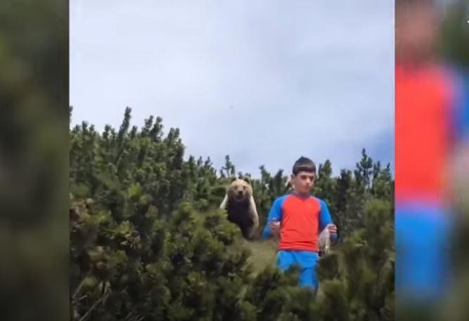 義大利男童遇到熊,冷靜地退回營地。圖取自Youtube