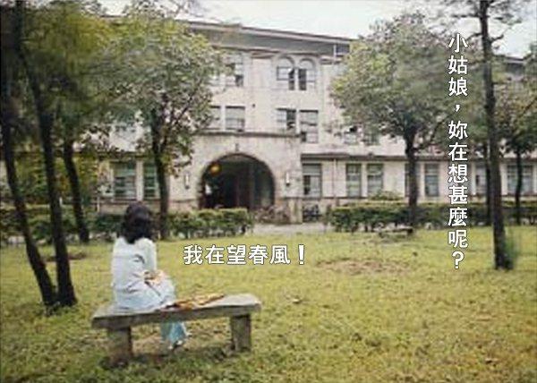 台大校史館翻拍自台大67學年度畢業紀念冊的照片,女學生坐在男13舍前的石凳上,與「望春風」的無厘頭連結。圖/台大校史館提供