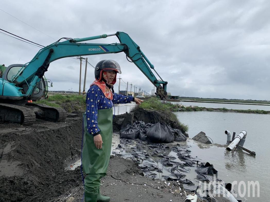 在雲林台西中央路旁護堤養殖的丁姓業者紅著眼眶,今天一早急赴魚塭勘查損失狀況。記者...