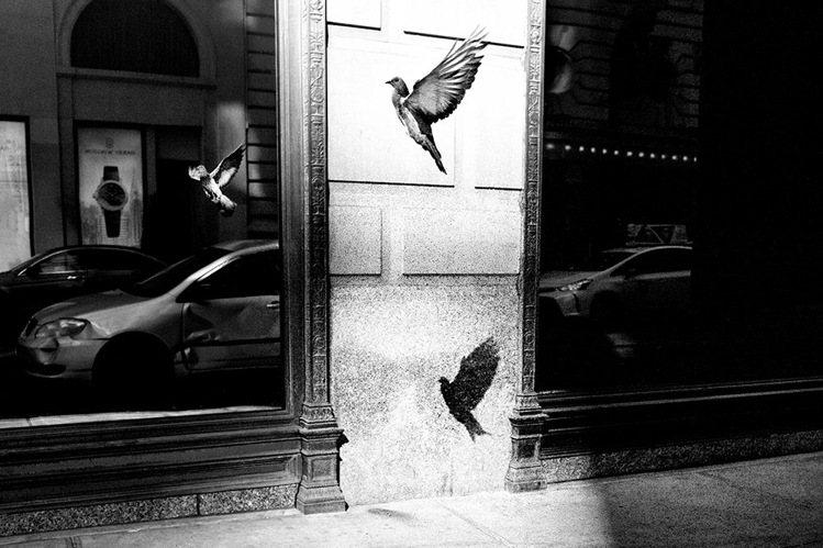 Alan Schaller透過黑白攝影,展現搶眼而獨特的城市觀,定格人生情緒百態...