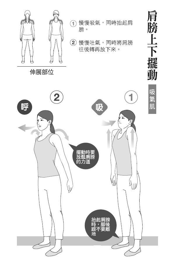 ● 肩膀上下擺動(吸氣肌) 1. 慢慢吸氣,同時抬起肩膀。 2. 慢慢吐...