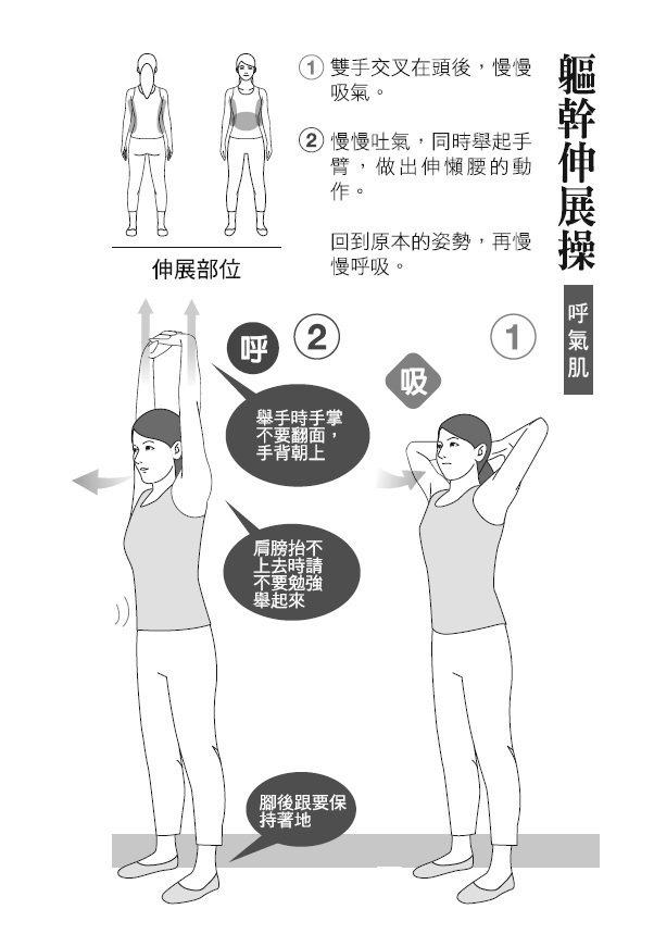 ● 軀幹伸展操(呼氣肌) 1. 雙手交叉在頭後,慢慢吸氣。 2. 慢慢吐...