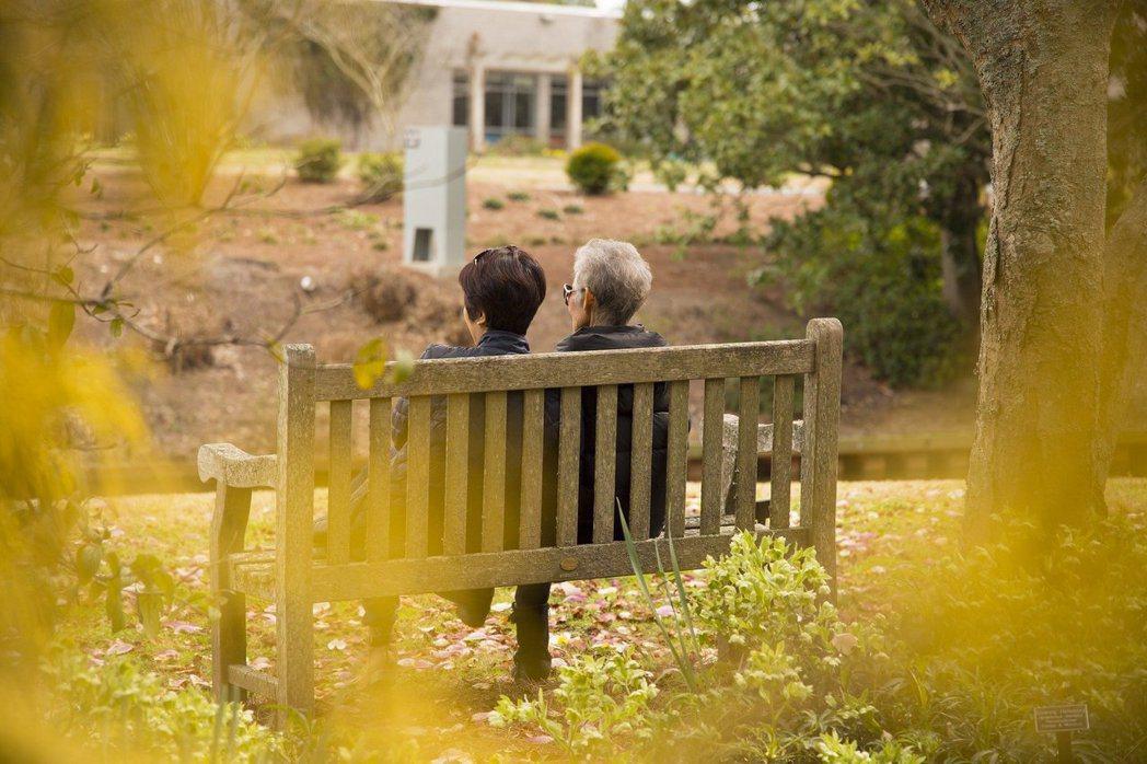老化、退化,隨著歲月累積是不會放過任何人的。 圖/pixabay