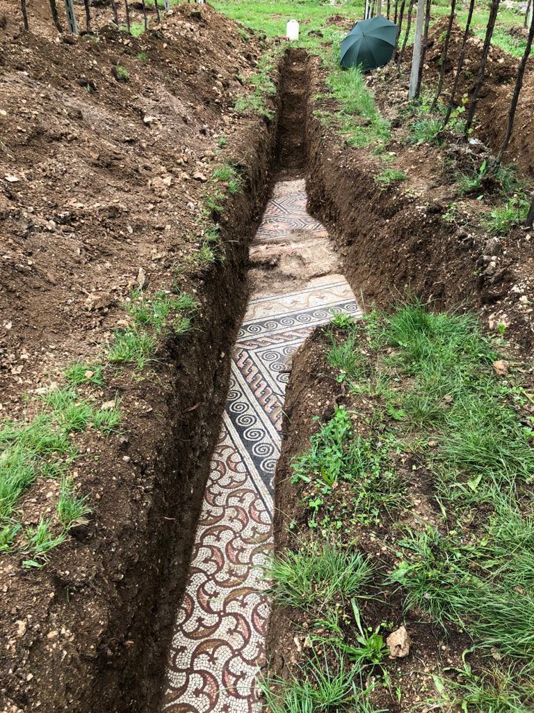 義大利一處葡萄園下藏有羅馬時期的別墅地磚遺跡。圖擷自「Comune di Negrar di Valpolicella」FB