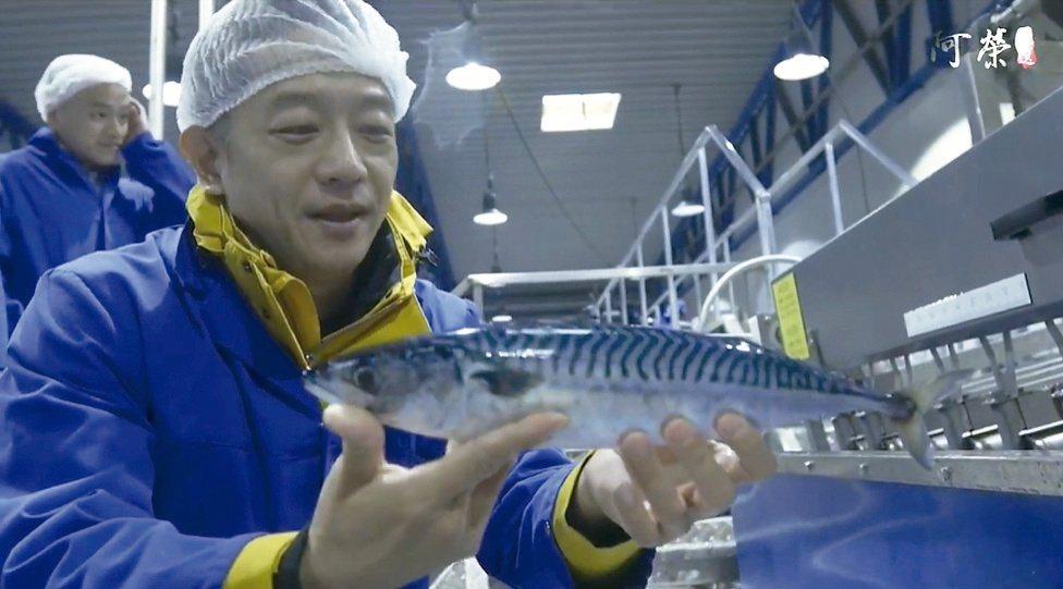 為了擁有獨家商品販售,陳昭榮遠赴挪威談鯖魚進口。圖/翻攝自阿榮嚴選臉書