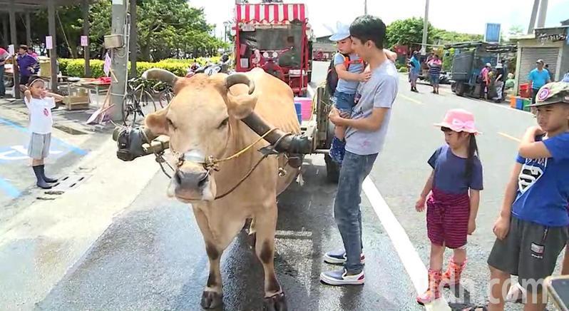 彰化縣海牛學校開學,小朋友充滿好奇,搭上海牛牛車。記者簡慧珍/攝影