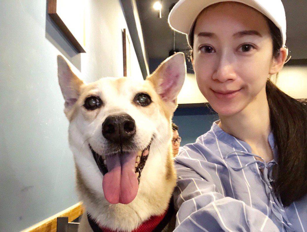 林涵的愛犬「乒乓」(左)2月因病去世了。圖/林涵提供