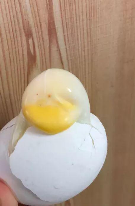網友分享日前煮水煮蛋破裂所流出的形狀像似一隻小鴨。圖片來源/ dcard