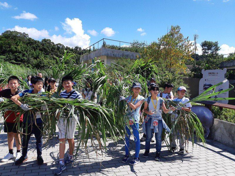 野調者聯盟體驗營擬結合動物園中的科學研究為教學課程,包含野外調查經驗分享、動物營養學等基礎科學介紹。圖/台北市立動物園提供