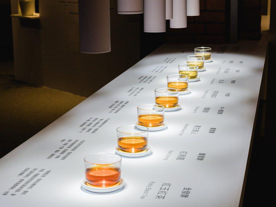 不同的茶湯色呈現出氧化過程中的風味旅程。 圖/衍序規劃設計提供