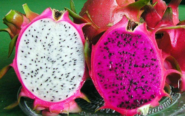 火龍果一般指的是白肉品種,右為富含花青素的紅龍果。本報資料照片