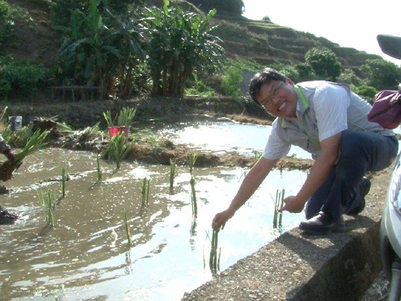 三芝茭白筍農及區長林慶豐種筍,期待天公作美風調雨順,讓筍豐收。 圖/紅樹林有線電視提供
