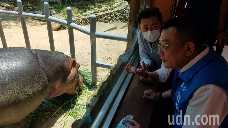新竹市長林智堅(左)向議長許修睿導覽河馬樂樂等各區的設施及景觀。記者黃瑞典/攝影