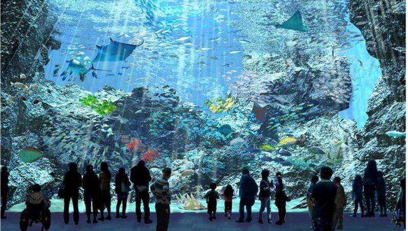 台灣八景島水族館規畫「福爾摩沙」展區(見圖),呈現台灣海域孕育的魚種和 海洋生物。圖/翻攝Xpark官網