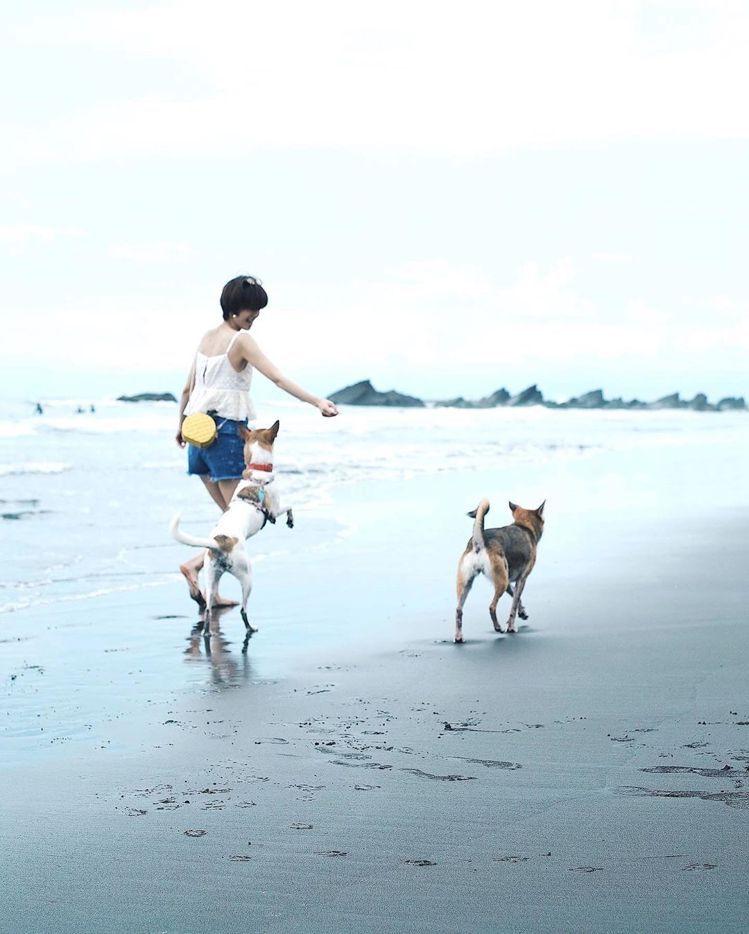 陳庭妮背著kate spade野餐系列鳳梨造型肩背包去海灘玩耍。圖/取自IG