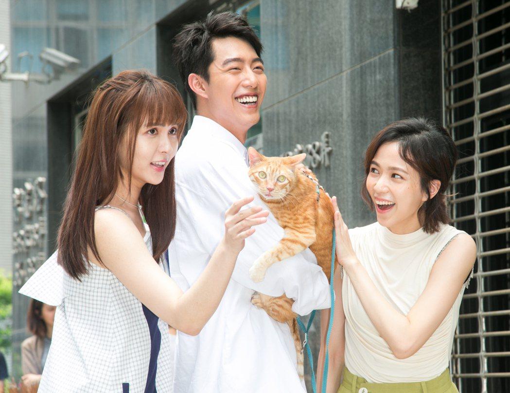 電影「都是你的毛」開鏡,由魏蔓(左起)、蔡凡熙與辛樂兒主演。記者陳立凱/攝影