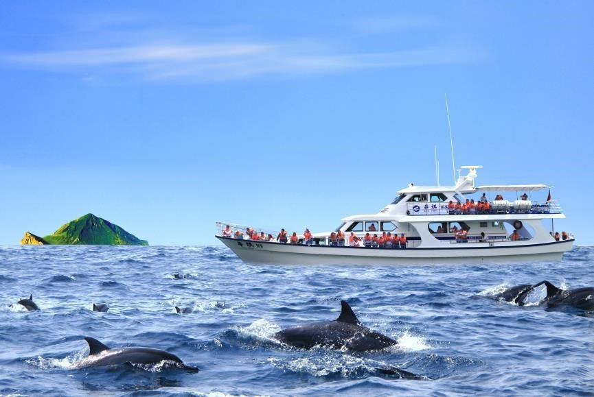 龜山島附近賞鯨豚。觀光局/提供