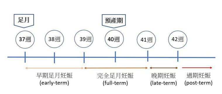 圖一、週數與妊娠的定義圖表