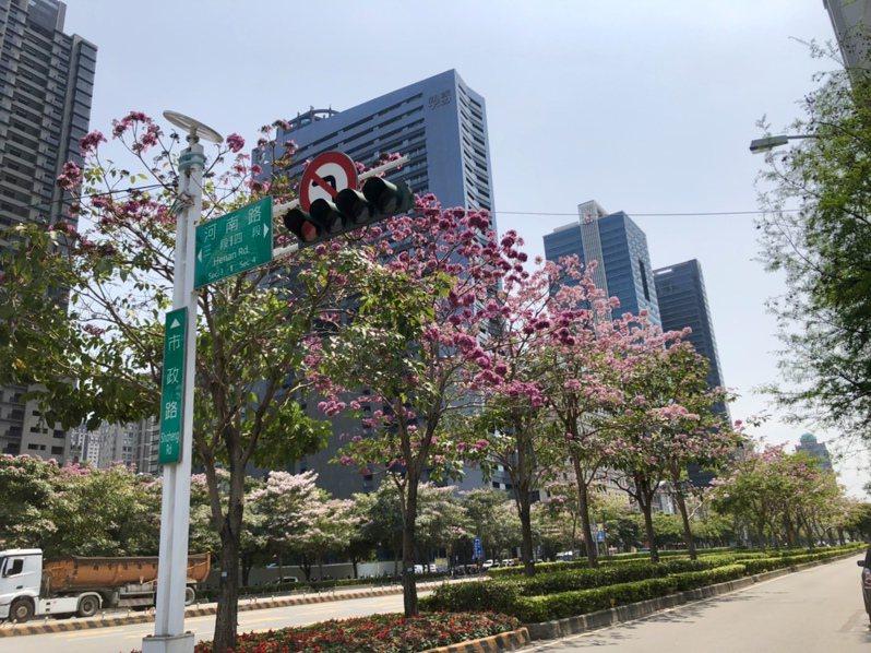 國際五星級酒店爭相插旗,台中七期市政路「國際大道」藍圖逐漸成形。 記者宋健生/攝影