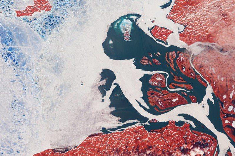 圖為2020年6月8日,位在諾里爾斯克漏油意外下游的皮亞西納河三角洲河冰與海冰相遇(已調過顏色)空拍。(Photo by Julien Seguinot on Flicker un-der Creative Commons license)
