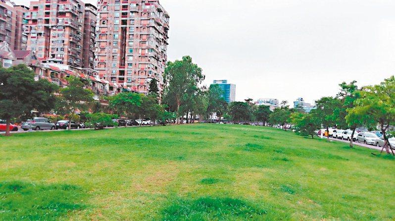 北市民生社區的松榮公園現況是一公頃左右的草地,將開闢成鄰里公園,進駐長者與兒童遊憩設施,但有居民主張難得的草地,種樹就好。 記者鄭朝陽/攝影
