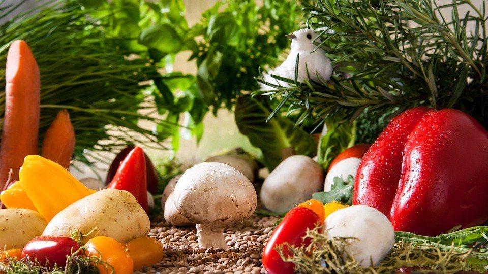 營養師減肥菜單大公開,你吃的營養嗎? 圖/pixabay