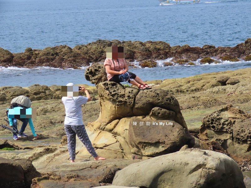 「大媽別坐在海豹上拍照好嗎」,八斗美景保育人士心痛。圖/陳信助提供