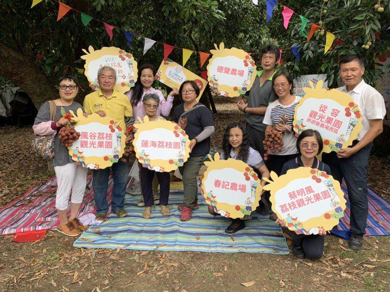新竹市6個荔枝觀光果園6月20日同步開放採果,並推出入場體驗券可享優惠。圖/市府提供