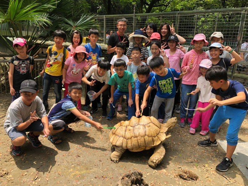 高雄市壽山動物園舉辦生態活動,邀請小朋友參與。圖/高雄市壽山動物園提供