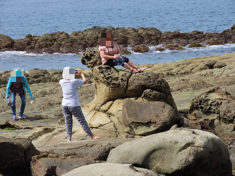 一名女遊客爬上基隆八斗子海豹岩拍照惹議,讓保育人士心痛,基隆鳥會盼比照象鼻岩,先納管保護。圖/陳信助提供
