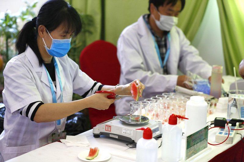 夏天吃西瓜雖然解渴消暑,但也要注意衛生問題。 中國新聞社