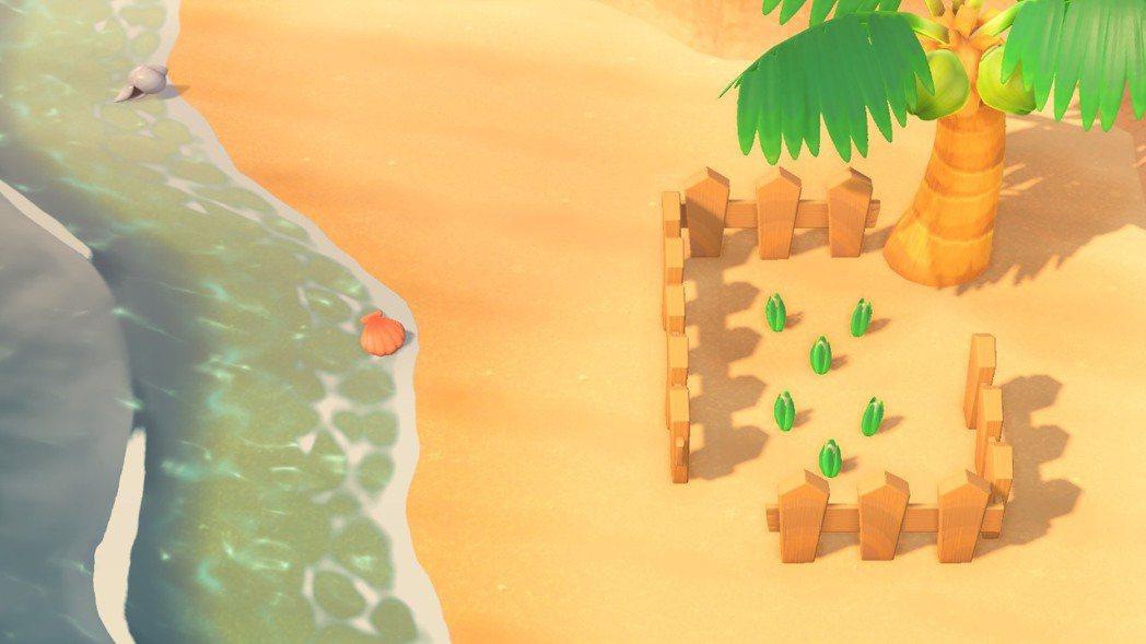 只要圍牆圍著植物,看起來就像花圃,沙灘上也一樣。植物在沙灘不會長大,風信子永遠都...