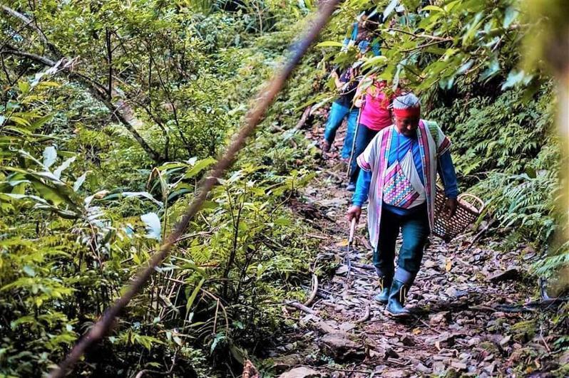 來到鹿野鄉永康部落,遊客可化身一日獵人,跟著布農族人學習狩獵。圖/台東縣政府提供