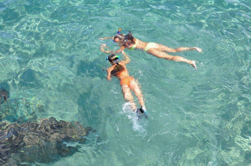 ▲暑假親子旅遊-浮潛&潛水。(圖/Pixabay)