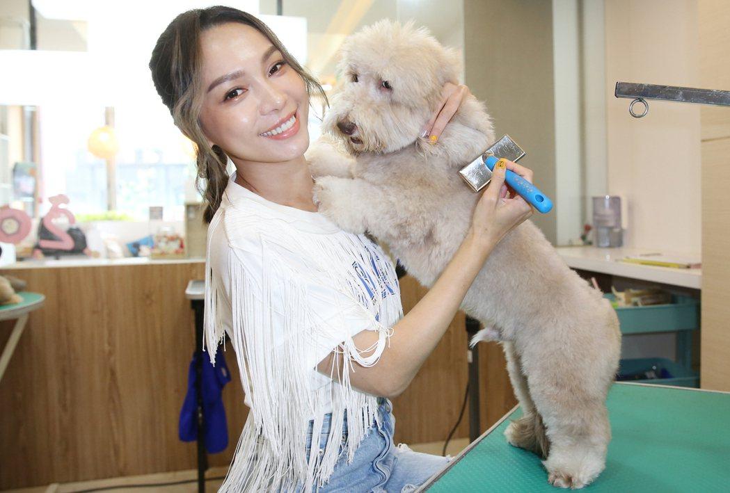 林采欣(左)常帶愛犬沙寶去「狗樂子寵物沙龍」大美容。記者曾學仁/攝影