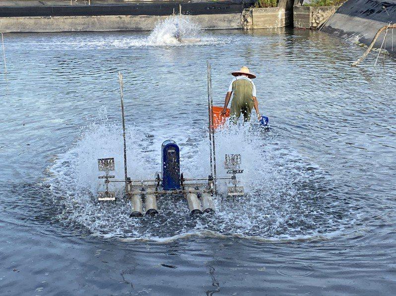 蝦養殖場。圖/宜蘭縣政府提供