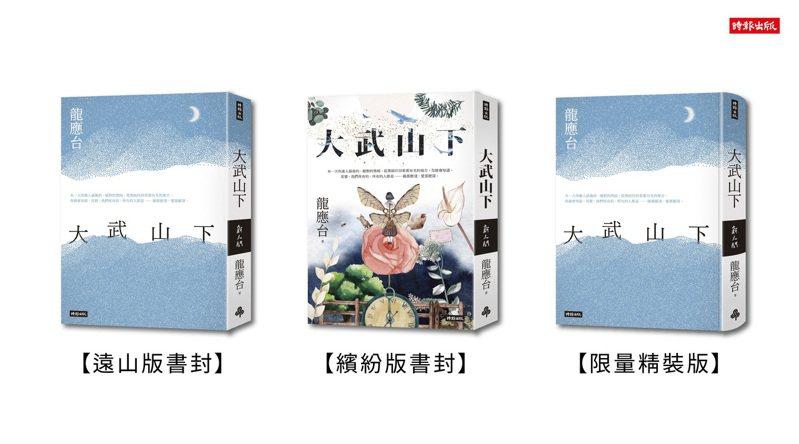 龍應台首部長篇小說「大武山下」。圖/時報出版提供