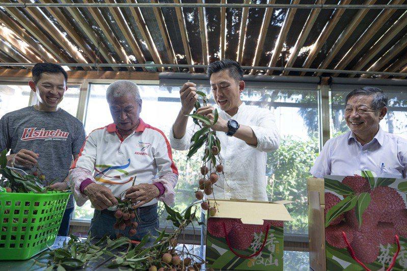 林智堅前往風谷荔枝觀光果園摘荔枝,向來自各地的遊客大力推荐口感特殊、酸甜又Q彈的新竹荔枝。圖/市府提供