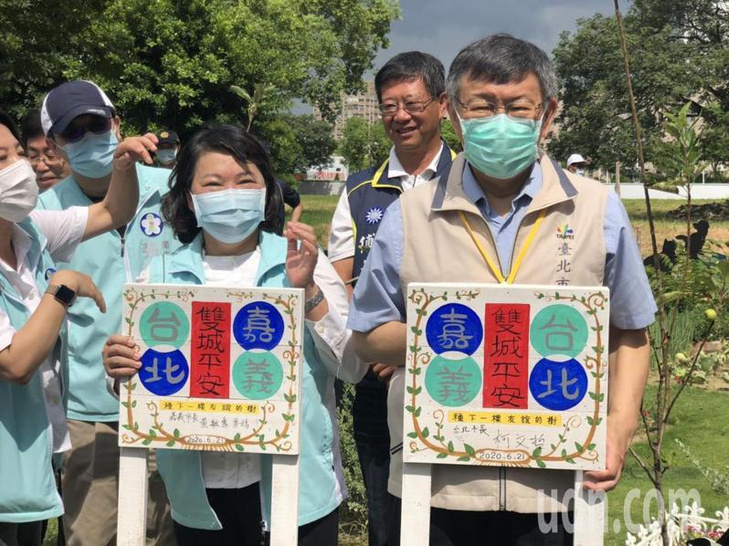 嘉義市長黃敏惠、台北市長柯文哲雙方種下友誼的蘋果樹,希望雙城平安。記者李承穎/攝影