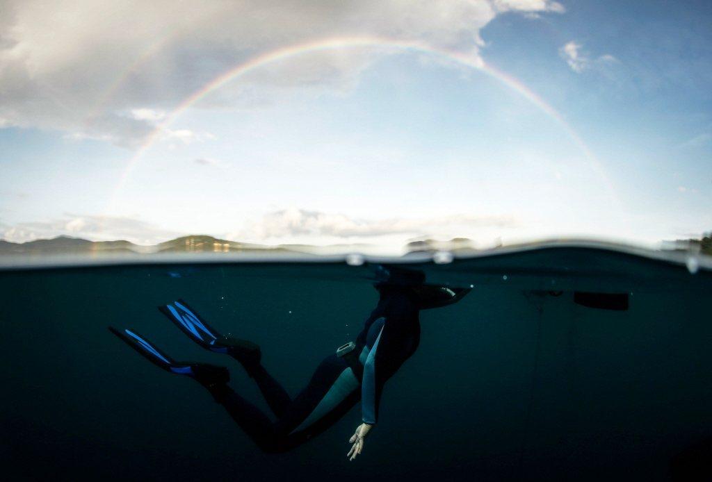 在從事自由潛水前學會基本游泳與水中字就技巧,讓你在潛水時能更安心享受。 圖/歐新社